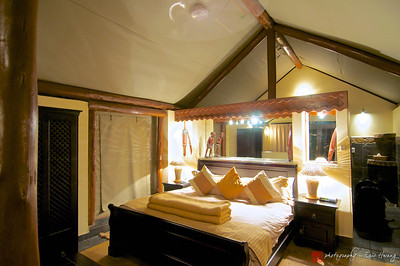 Luxury Tented Hut at Zulu Nyala, South Africa